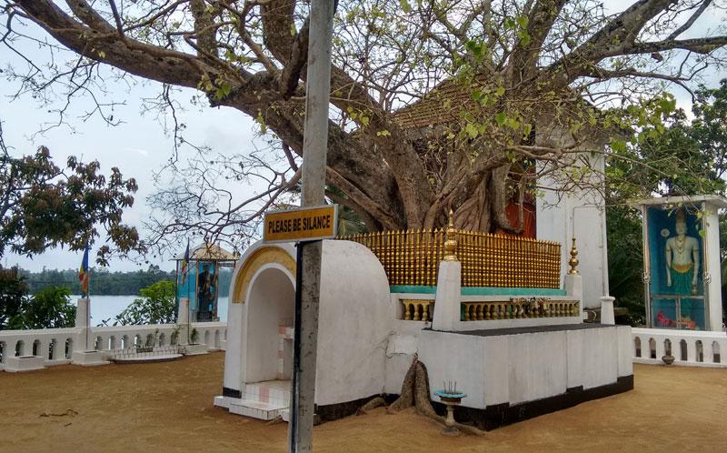 Kothduwa Rajamaha Viharaya Tempel