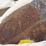 Petrified Forest Nationalpark - Petroglyphen