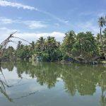 Chinesische Fischernetze in Andhakaranazhi